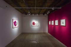 Vue01.Galerie Art Mûr_2014